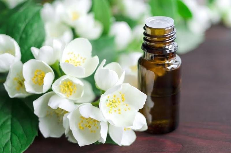 4 loại tinh dầu giúp chữa chứng mất ngủ - ảnh 4