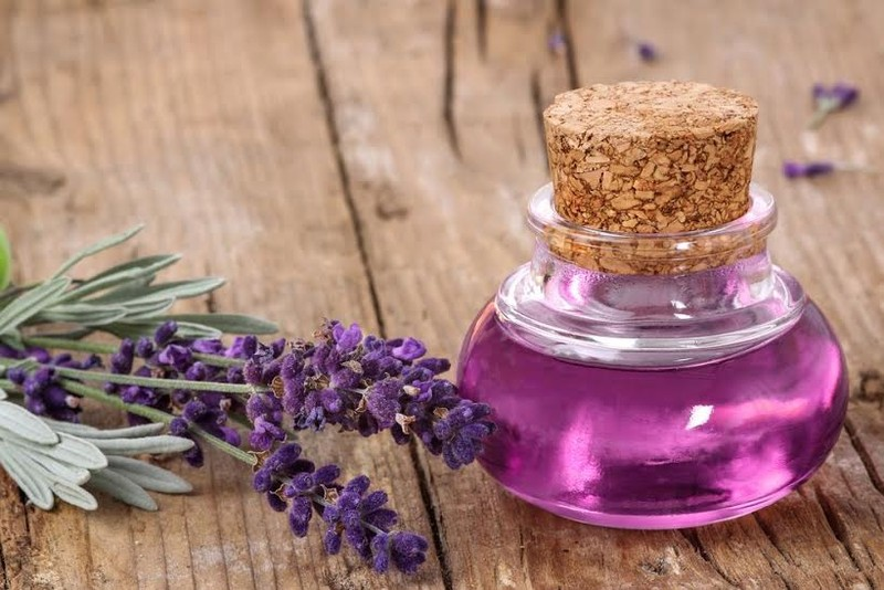 4 loại tinh dầu giúp chữa chứng mất ngủ - ảnh 2