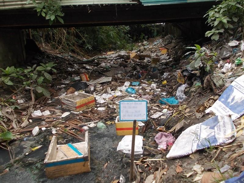 Lo nạn xả rác gây ngập sân bay Tân Sơn Nhất - ảnh 1