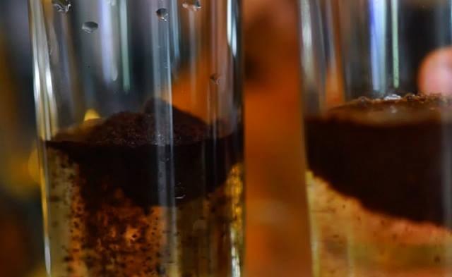 Cách nhận biết cà phê nguyên chất cực dễ và hiệu quả - ảnh 1