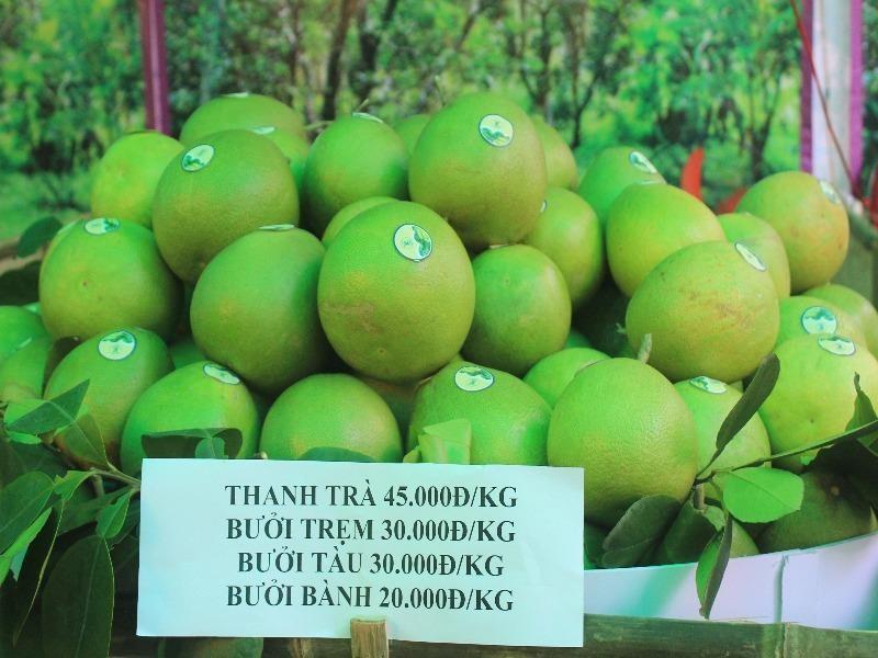 giá bán thanh trà