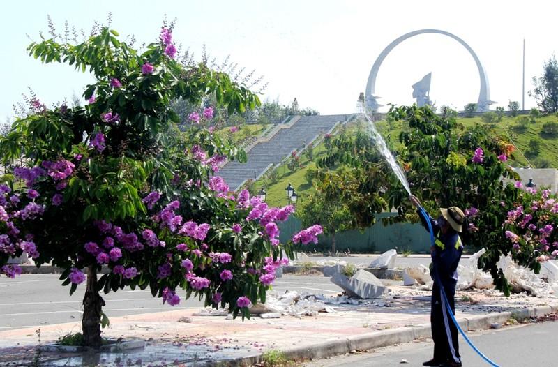 Mùa hoa bằng lăng tím ngát bên Vòng tròn bất tử - ảnh 5