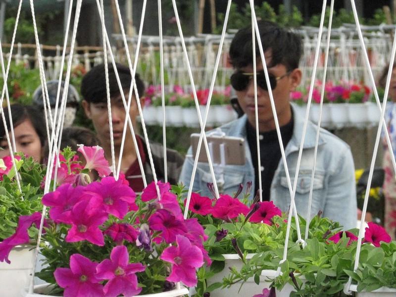 Hàng ngàn người về Sa Đéc ngắm hoa - ảnh 7