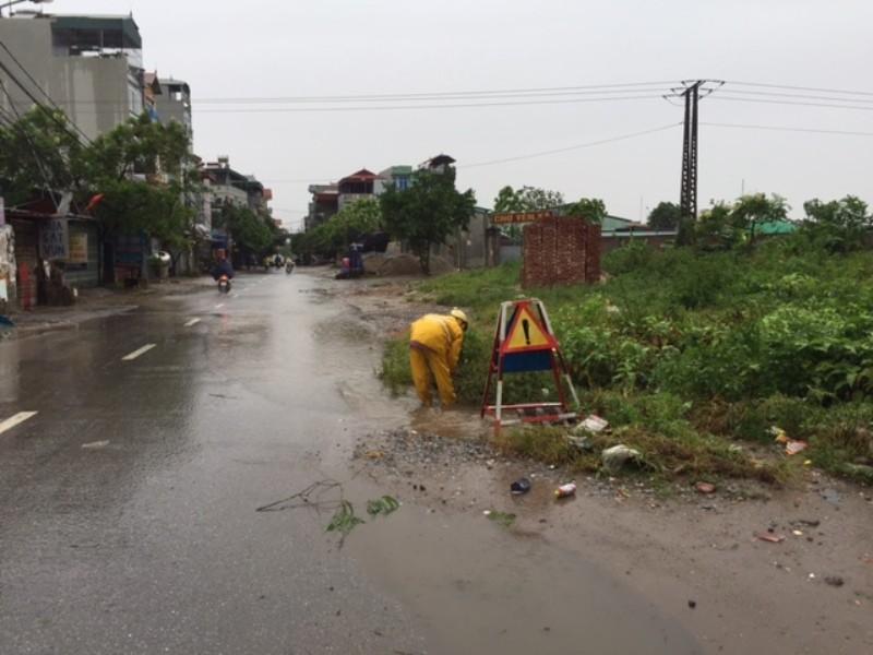 Bão số 1 tràn về Hà Nội: Cây đổ tan hoang - ảnh 6