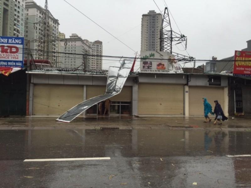 Bão số 1 tràn về Hà Nội: Cây đổ tan hoang - ảnh 11