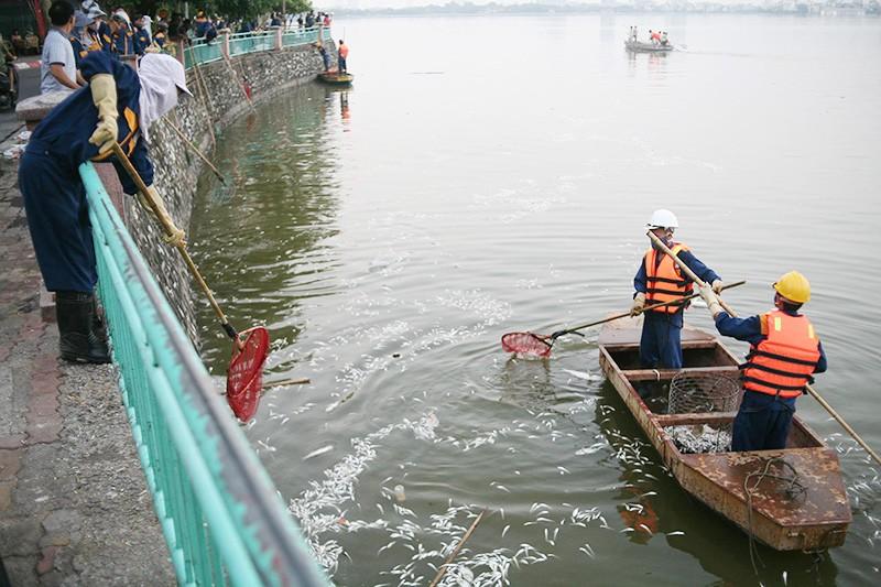 Cá chết ở Hồ Tây: Chủ tịch Nguyễn Đức Chung đi thị sát - ảnh 2