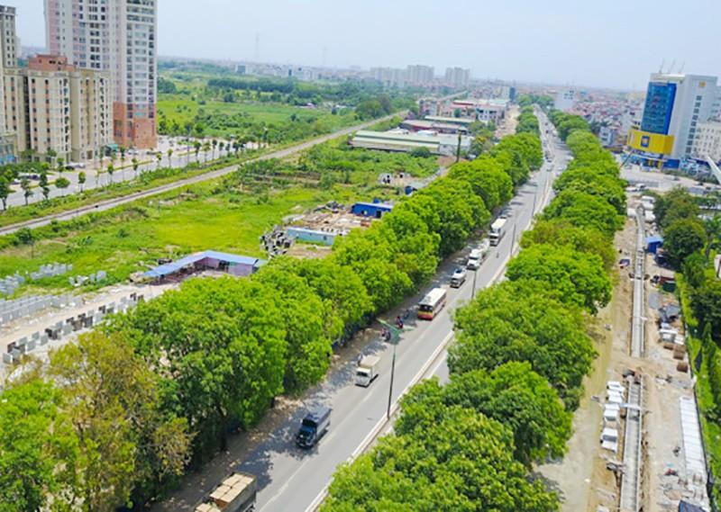 Hà Nội: Bất khảng kháng mới chặt cây ở Phạm Văn Đồng - ảnh 1