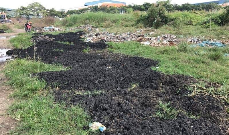 Cảnh sát môi trường lại bắt xe đổ bùn trái phép  - ảnh 2