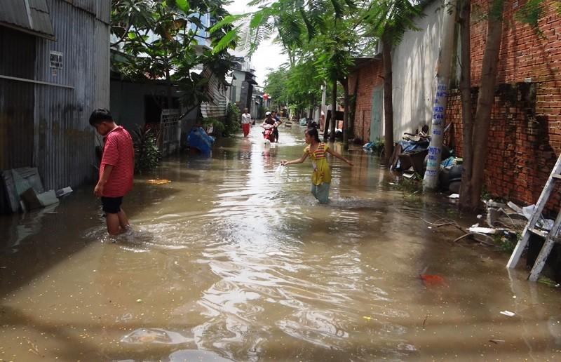 Cảnh ngập ở Sài Gòn chẳng khác chốn thôn quê - ảnh 1