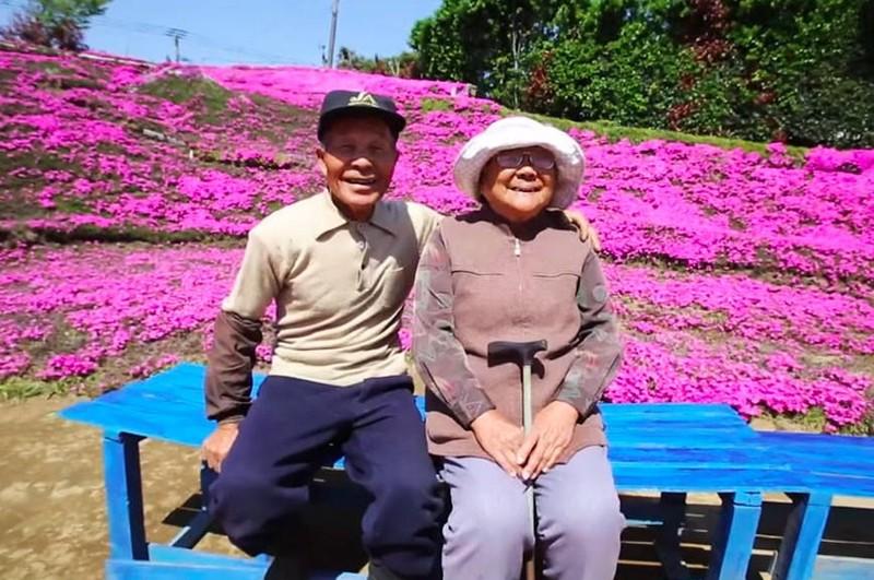Cụ già trồng một đồi hoa để tặng người vợ mù - ảnh 4
