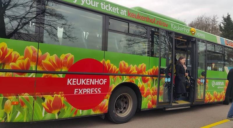 Keukenhof: Vườn hoa xuân đẹp nhất thế giới - ảnh 1