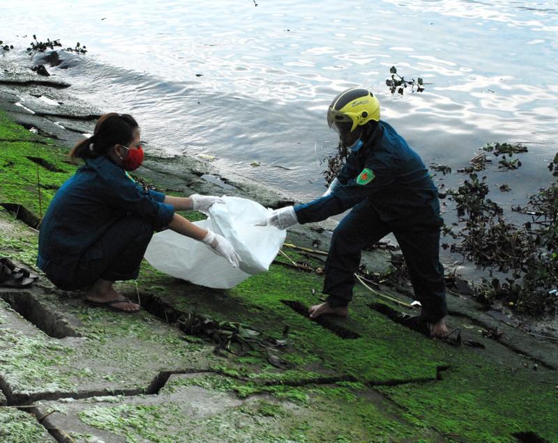Chùm ảnh: Dân quân thu gom cá biển chết dạt vào bờ - ảnh 1