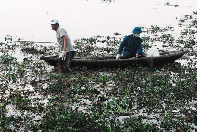 Chùm ảnh: Dân quân thu gom cá biển chết dạt vào bờ - ảnh 2