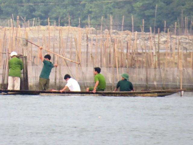 Cá nuôi lồng ở Huế tiếp tục chết hàng loạt - ảnh 4