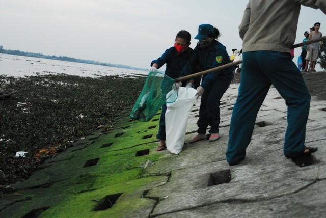 Chùm ảnh: Dân quân thu gom cá biển chết dạt vào bờ - ảnh 5