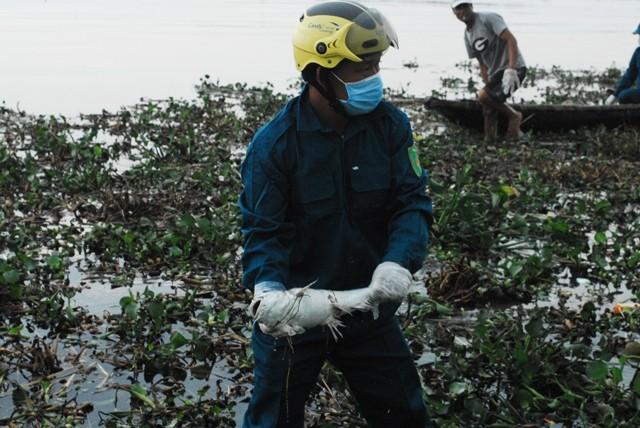 Chùm ảnh: Dân quân thu gom cá biển chết dạt vào bờ - ảnh 4