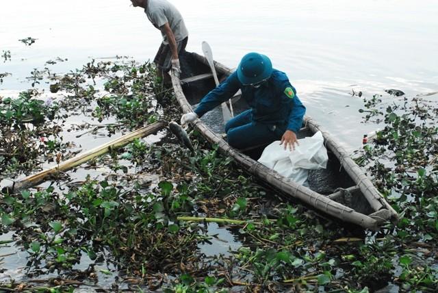 Chùm ảnh: Dân quân thu gom cá biển chết dạt vào bờ - ảnh 6