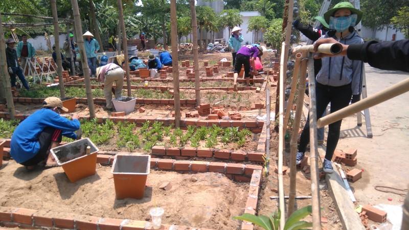 Sinh viên dựng 'vườn rau liệu pháp' tặng bệnh viện - ảnh 4