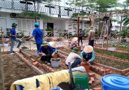 Sinh viên dựng 'vườn rau liệu pháp' tặng bệnh viện - ảnh 1