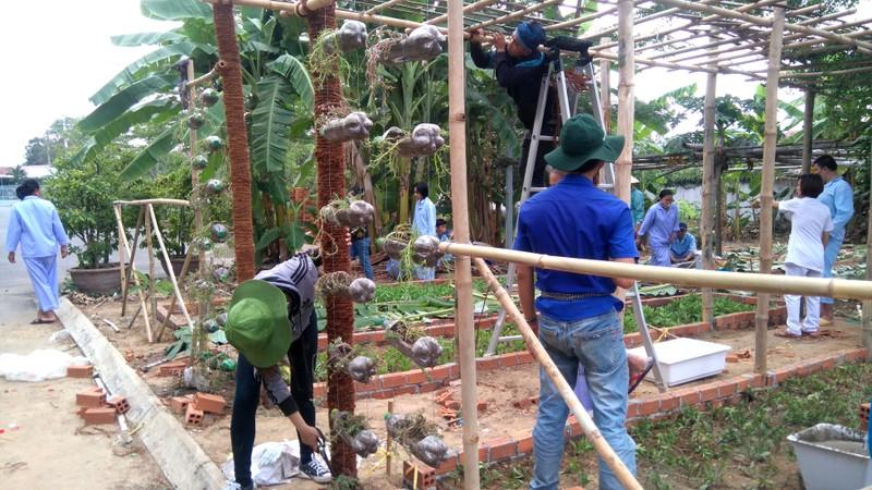 Sinh viên dựng 'vườn rau liệu pháp' tặng bệnh viện - ảnh 2