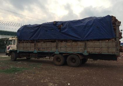 4 ngày, Bình Phước xử phạt 32 xe quá tải 400 triệu đồng  - ảnh 1