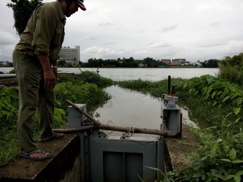 Đếm không xuể hư hỏng ở đê bao sông Sài Gòn  - ảnh 1
