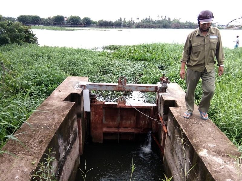Đếm không xuể hư hỏng ở đê bao sông Sài Gòn  - ảnh 2