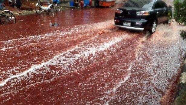 Xuất hiện dòng sông máu tại thủ đô Bangladesh - ảnh 2
