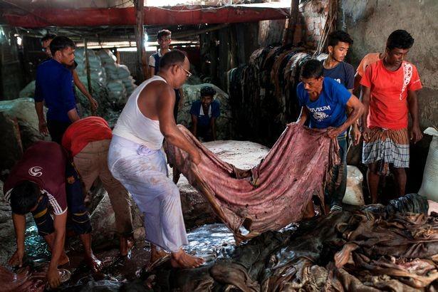 Xuất hiện dòng sông máu tại thủ đô Bangladesh - ảnh 8