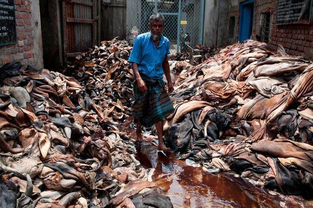 Xuất hiện dòng sông máu tại thủ đô Bangladesh - ảnh 9
