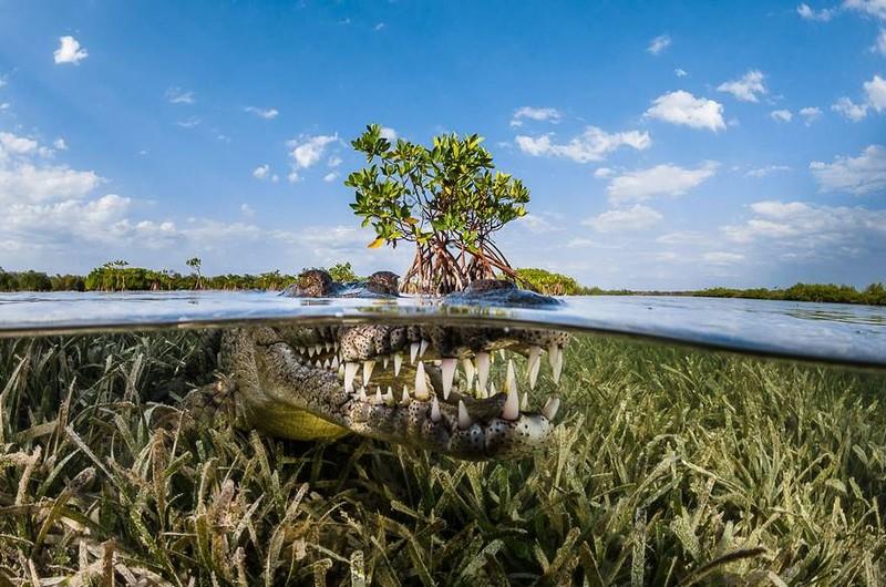 Việt Nam lọt top ảnh đẹp du lịch thế giới - ảnh 7