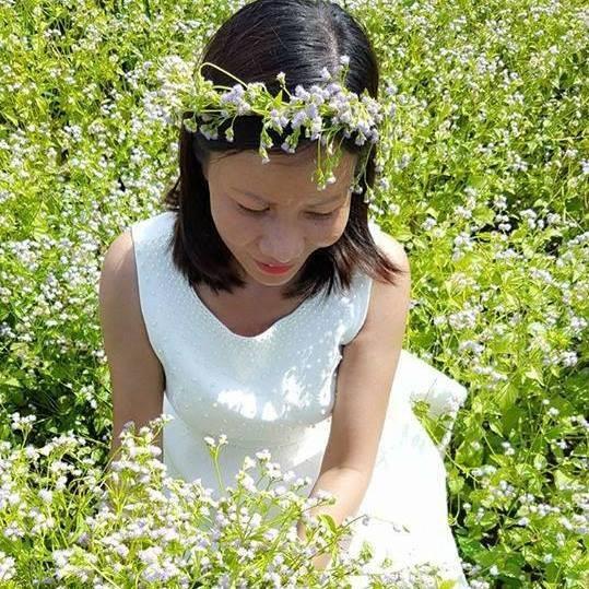 Bất ngờ với đồng hoa dại giữa lòng TP Tây Ninh - ảnh 8