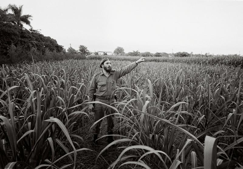 Chùm ảnh về cuộc đời và sự nghiệp lãnh tụ Fidel Castro  - ảnh 11