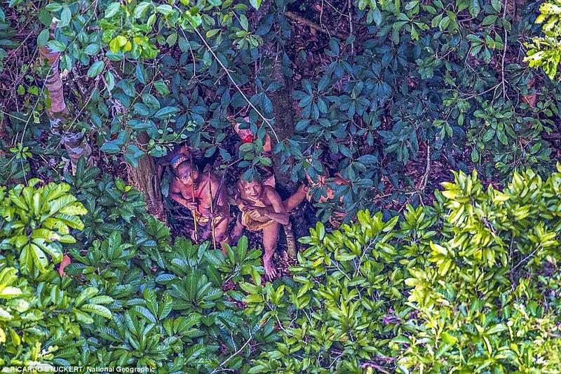 Phát hiện bộ lạc bí ẩn trong rừng Amazon - ảnh 1