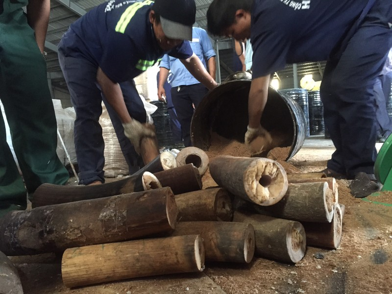 Phát hiện hơn 1.000 kg ngà voi núp trong... thùng phuy  - ảnh 3