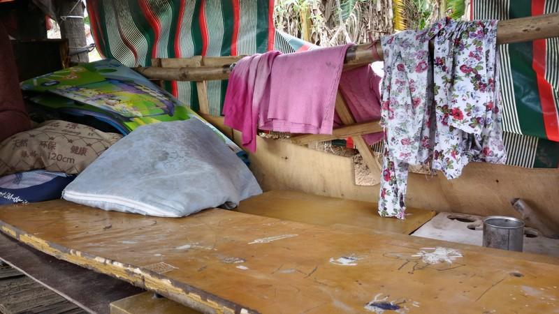 Túp lều 3 m2 của cụ bà 75 tuổi dưới chân cầu Long Biên - ảnh 5