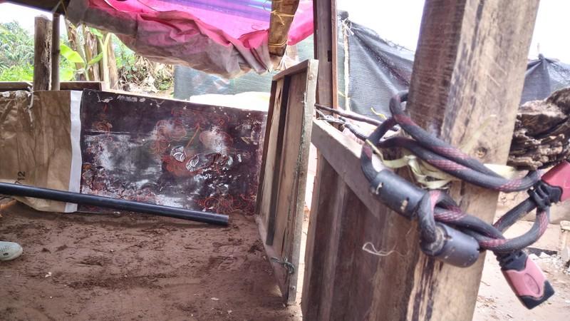 Túp lều 3 m2 của cụ bà 75 tuổi dưới chân cầu Long Biên - ảnh 8
