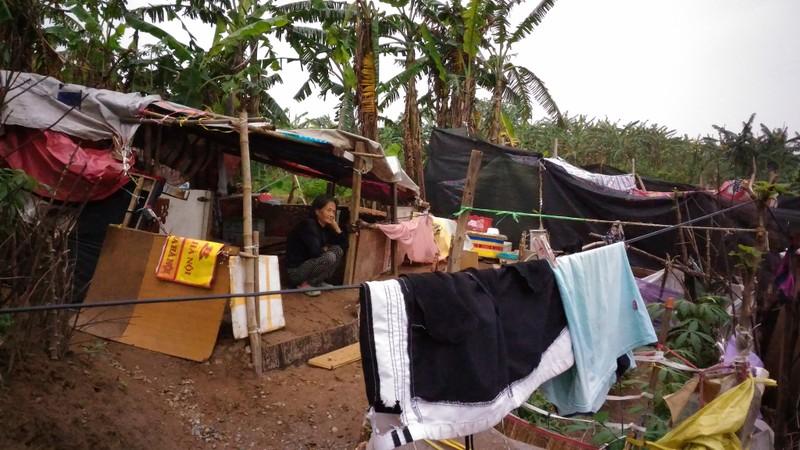 Túp lều 3 m2 của cụ bà 75 tuổi dưới chân cầu Long Biên - ảnh 1