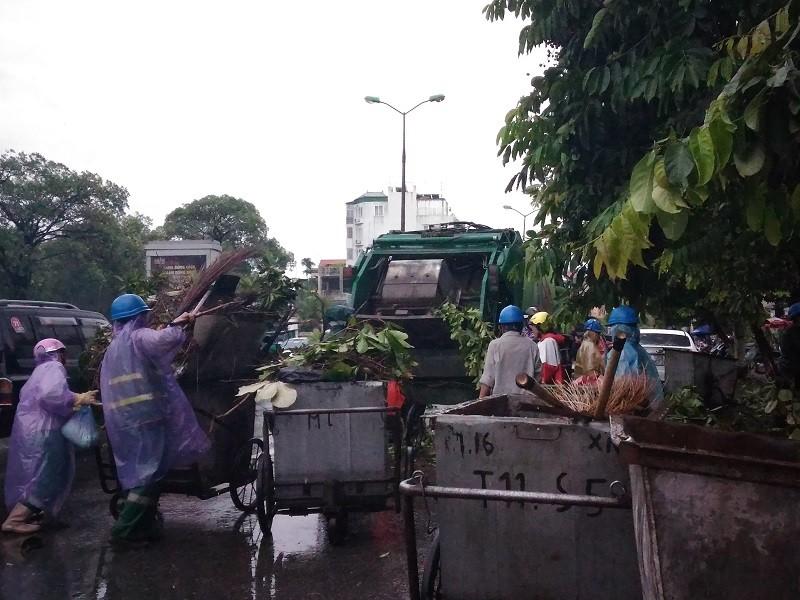 Cây mới trồng trên đường Nguyễn Chí Thanh đua nhau bật gốc sau bão - ảnh 7