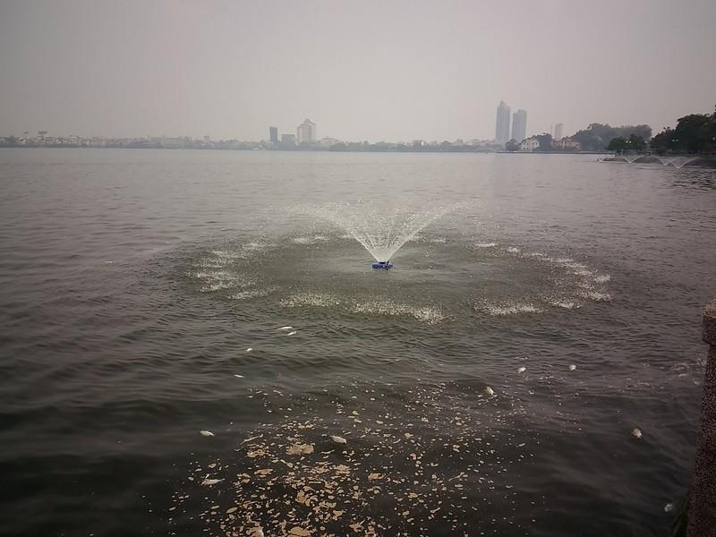 Hồ Tây không còn cá chết nhưng mùi thối vẫn nồng nặc - ảnh 4