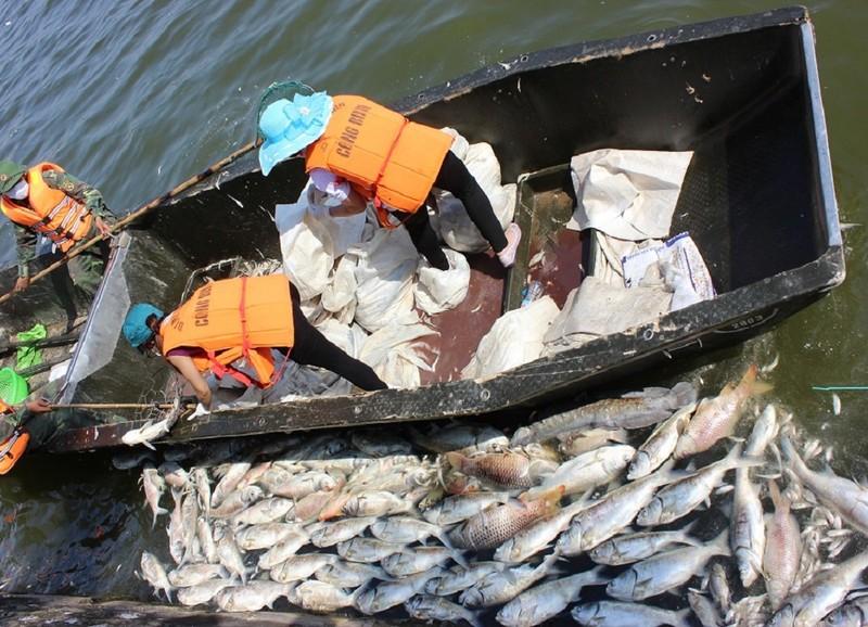 Hồ Tây không còn cá chết nhưng mùi thối vẫn nồng nặc - ảnh 9