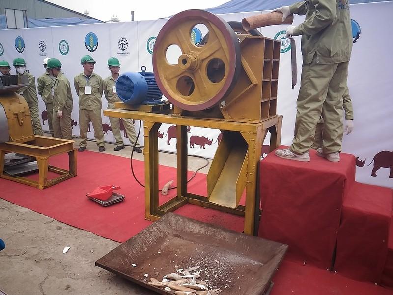 Lần đầu tiên Việt Nam tiêu hủy hơn 2.000 kg ngà voi - ảnh 6
