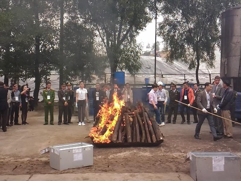 Lần đầu tiên Việt Nam tiêu hủy hơn 2.000 kg ngà voi - ảnh 8