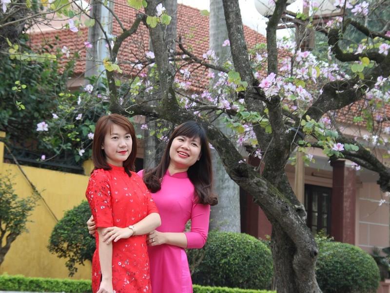 Thiếu nữ Hà thành đẹp mê mẩn bên hoa ban Tây Bắc - ảnh 11