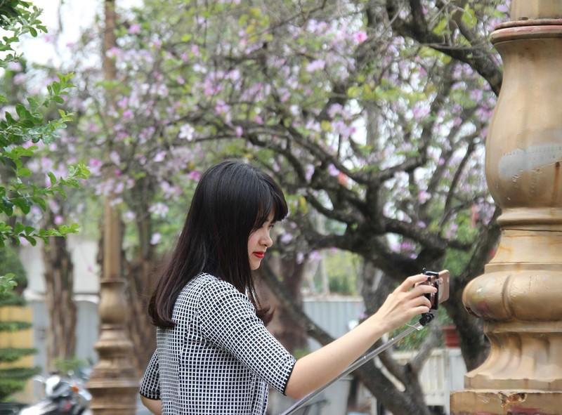Thiếu nữ Hà thành đẹp mê mẩn bên hoa ban Tây Bắc - ảnh 9