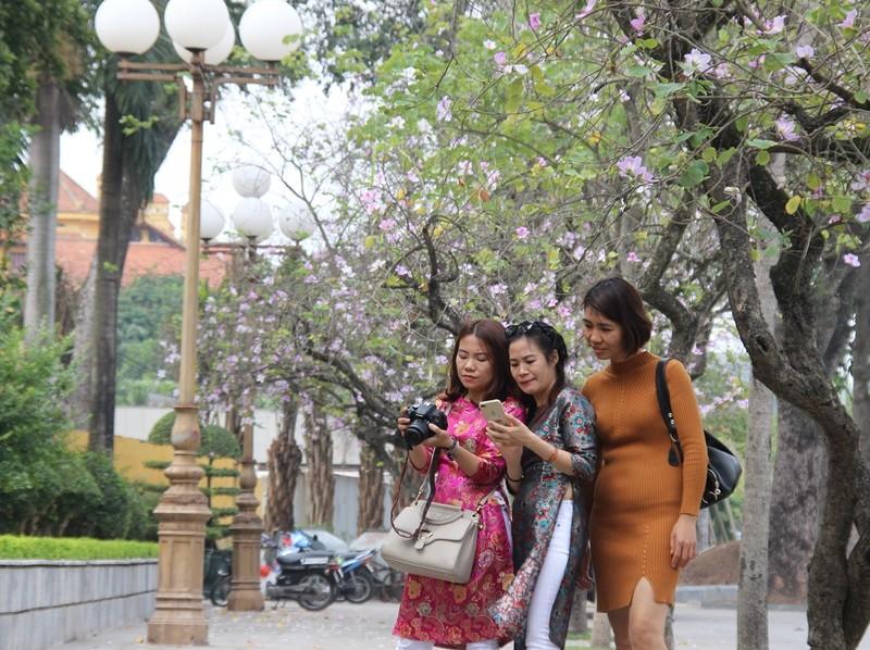 Thiếu nữ Hà thành đẹp mê mẩn bên hoa ban Tây Bắc - ảnh 3