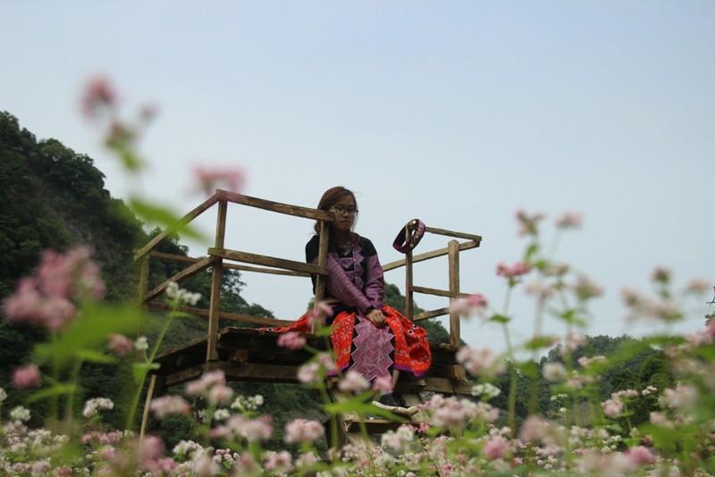 Say lòng hoa tam giác mạch cuối mùa xứ Tây Bắc - ảnh 10