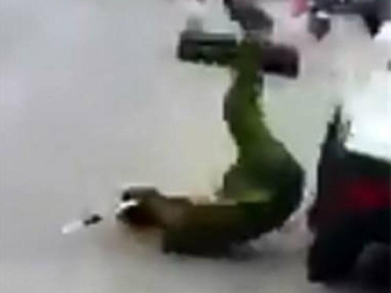 Tài xế lái xe tông ngã cảnh sát rồi bỏ chạy - ảnh 1