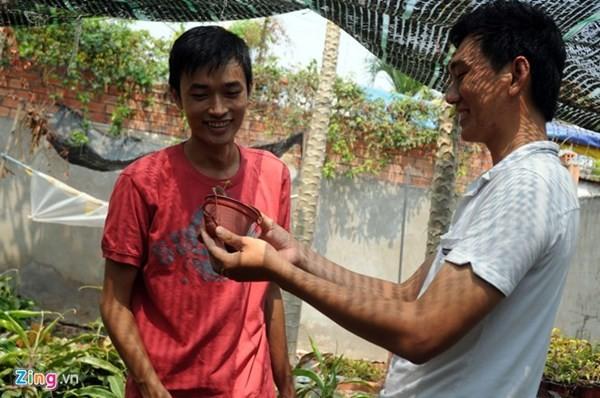 Tận thấy thú chơi 'cây ăn thịt' ở Sài Gòn - ảnh 7