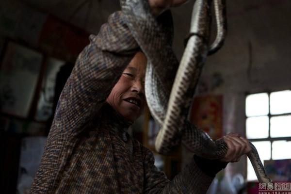 Nuôi hơn 20 con rắn trong nhà 'làm bạn' suốt 30 năm - ảnh 2